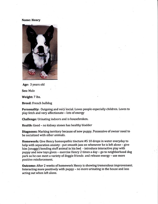 pet profile Henry-page-0